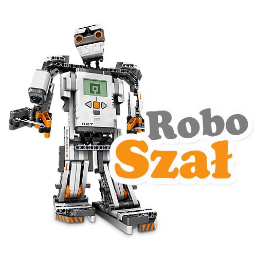 pokaz robotów rzeszów-animator rzeszów-animator na wesele-organizacja urodzin rzeszów-urodziny rzeszów-zajęcia dla dzieci-warsztaty dla dzieci